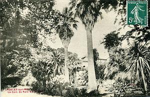 Charles Victor Naudin - The two Washingtonia planted by Charles Naudin at Villa Saint Malo in Argelès.