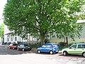 Arnhem - Utrechtseweg 87 - 4.jpg