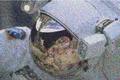 Astronaut-noise.png