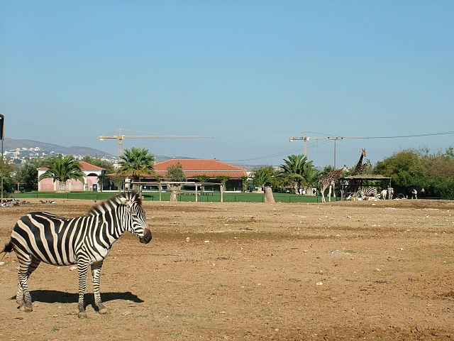 Attischer Zoologischer Park