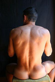 Schiena maschile