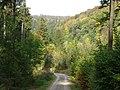 Aus dem Helbetal zur Helbeburg - panoramio.jpg