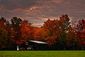 Autumn-mail-pouch-barn - Virginia - ForestWander.jpg