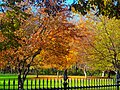Autumn Colors at the Executive Mansion - panoramio (3).jpg
