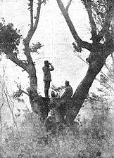 Avstro-ogrska straža opazuje sovražnika na italijanski fronti.jpg