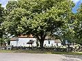 BORRE KIRKE medieval church Kirkebakken HORTEN Norway Kirkegård gravlund cemetery gravminner gravsteiner headstones tombstones Trær sommer P-skilt etc 2021-07-08 IMG 7905.jpg