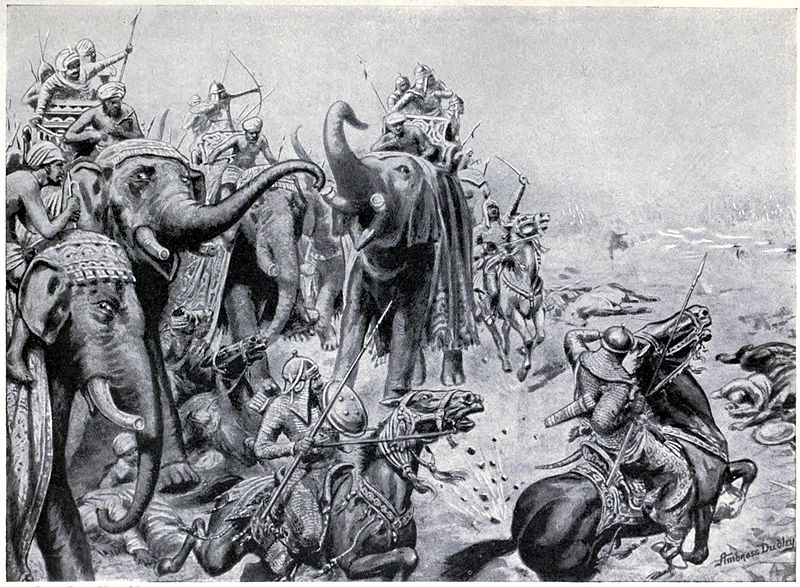 essay about faithful elephants Have students read faithful elephants then ask them to write a book review book reviews are great ways to engage students' critical thinking about what they just read.
