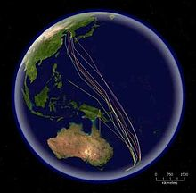 A map of the Pacific Ocean with several coloured lines representing bird routes running from New Zealand to Korea