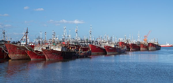 Traditional fishing vessels in port of Mar del Plata, Argentina