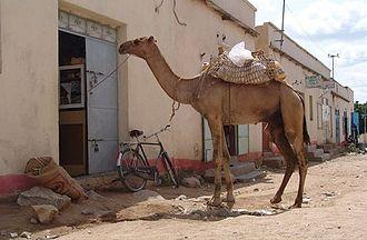 Barentu, Eritrea - Image: Barentu