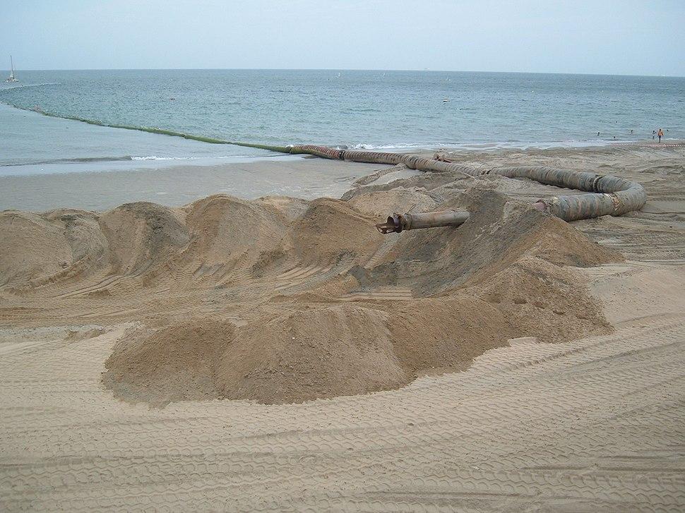 Beach restoration device