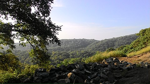 Beautiful Evening at the Sanjay Gandhi National Park, Mumbai.jpg