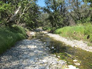 San Juan Creek - Bell Creek, the second largest tributary of San Juan Creek, flowing through Caspers Wilderness Park