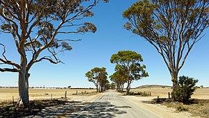 Wheatbelt (Western Australia) - Bencubbin–Kellerberrin Road
