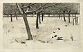 Besneeuwde boomgaard, zeven vogels in sneeuw.jpeg