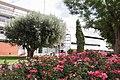 Biblioteca d'Alaquàs exterior 01.jpg