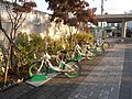 Bicycle-sharing station in Seoul 1.jpg