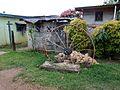Big Rusty Wagon Wheel (31411081565).jpg