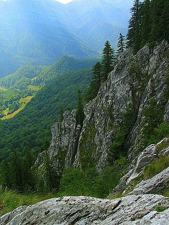 Bihor Mountains - The Galbenei Stone, Bihor Mountains