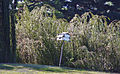 Bird house on White Course - East Potomac Golf Course - 2013-08-25.jpg