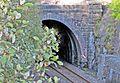 Birkett Tunnel JP S&C MR 1875.jpg