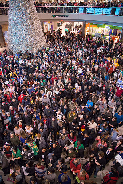 File:Black Lives Matter protest, Mall of America, December 2014.jpg