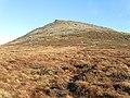 Blackstairs Mountain - geograph.org.uk - 1100606.jpg