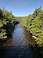 Blackwater Falls State Park WV 23.jpg