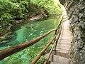 Blejski Vintgar, Slovenia (7).jpg