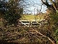 Blocked Field Gate - geograph.org.uk - 733732.jpg