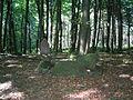 Blocksteinkiste zimmerberg.JPG