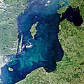 Bloom-filled Baltic.jpg