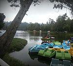 Boat Rides.jpg