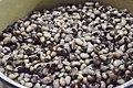 Boiled beans.jpg