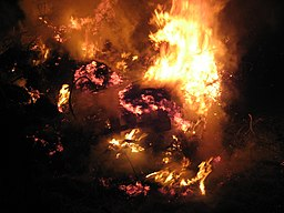 http://upload.wikimedia.org/wikipedia/commons/thumb/f/fe/Bonfire_inferno.jpg/256px-Bonfire_inferno.jpg