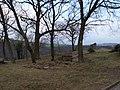 Bornich, Germany - panoramio (3).jpg