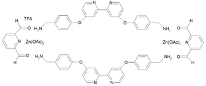 Molecular Borromean rings - Synthesis of one ring in Borromean ring system from 2,6-diformylpyridine and a diamine in presence of zinc acetate and TFA. The ring-system consists of three such interlocked rings