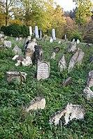 Boskovice-židovský-hřbitov2018e.jpg