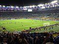 Bosnia players at Maracanã 15 June 2014.jpg