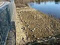 Brücke - panoramio (25).jpg