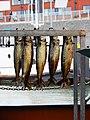Breskens - Séchage du poisson.jpg
