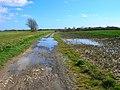 Bridleway to Horsebridge - geograph.org.uk - 352643.jpg