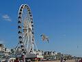 Brighton Ferris wheel.jpg