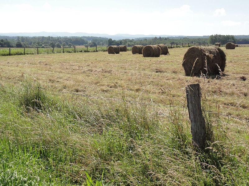 Brouville (M-et-M) paysage