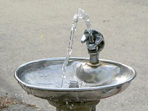 Drinking fountain - A typical drinking fountain