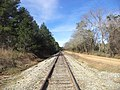 Buck Creek Church Rd RR looking WB, Colquitt County.JPG