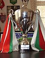 Bulgarian Cup 2008.JPG