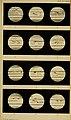 Bulletins de l'Académie royale des sciences, des lettres et des beaux-arts de Belgique (1873) (19878996884).jpg