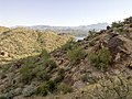 Butcher Jones Trail - Mt. Pinter Loop Trail, Saguaro Lake - panoramio (71).jpg
