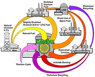 CANDU reactor - Range of possible CANDU fuel cycles: CANDU reactors can accept a variety of fuel types, including the used fuel from light-water reactors
